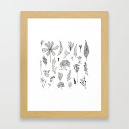 Graphical herbs Framed Art Print