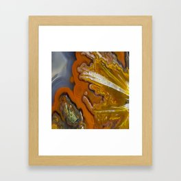 Condor Agate Sagenite Framed Art Print