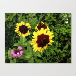 Flowers In Mid-Summer Canvas Print