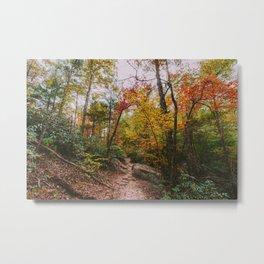 Kentucky Autumn at Natural Bridge State Park Metal Print