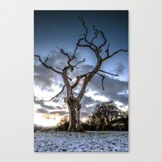 Dead of Winters Light Canvas Print