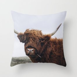 Scottish Highlander   Dutch dunes   Nature photography print   Landscape wall art Art print Throw Pillow