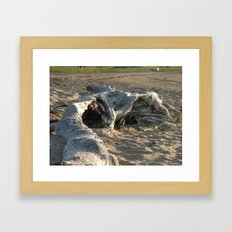 Drift Wood Framed Art Print