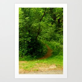 In to the Trail Art Print