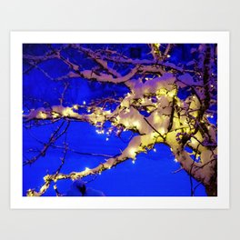 Snow Lit Tree at Night Art Print
