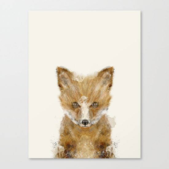 little fox cub Canvas Print