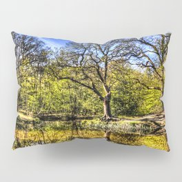 The quite Pond Pillow Sham