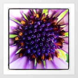 Purple Passion Floral Art Print