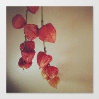 plants Canvas Prints featuring Plants by Kumi Jono