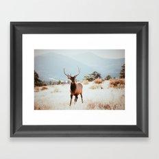 RMNP  Framed Art Print