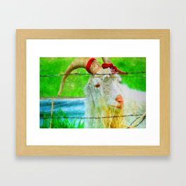 Idaho Billy Goat Framed Art Print