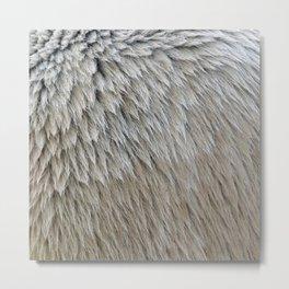 Fur || Metal Print