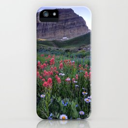 Mt. Timpanogos Wildflowers At Sunset iPhone Case