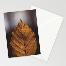 Yellow elm leaf Stationery Cards