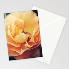 Summer Peach Stationery Cards