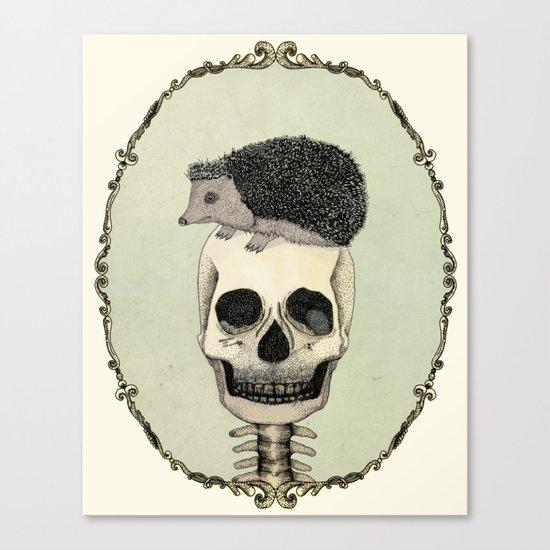 Yojik On A Skull Canvas Print