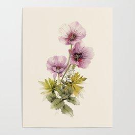 Geranium & Gardenmint Poster
