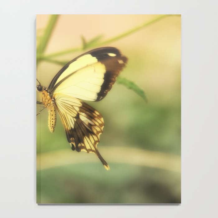 Exotic Butterfly natural beauty Notebook