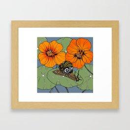 Snail on Nasturtiums Framed Art Print