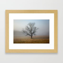 In a Fog - Mystical Morning in the Great Smoky Mountains Framed Art Print