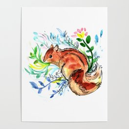 Cute Korea squirrel in sping flowers Poster