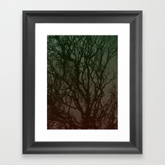Ombre branches Framed Art Print