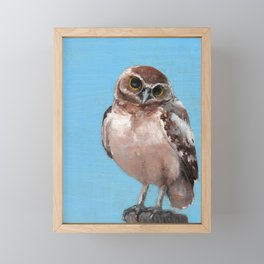 Little Owl Framed Mini Art Print
