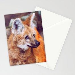 Amber Gaze Stationery Cards