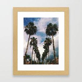 Palms Of Venice Framed Art Print