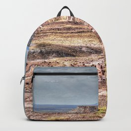 Petrified forest Backpack