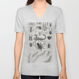Entomology - Arachnides Myriapoda from A history of the earth and animated nature (1820) by Oliver G Unisex V-Neck