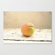 One appricot Canvas Print