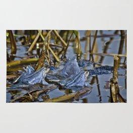 Blue Frogs 11 - Rana arvalis Rug