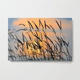 Sunrise Grass Metal Print