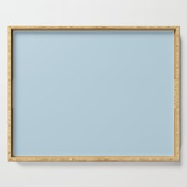 Behr Glacial Stream (Light Pastel Blue) S490-2 Solid Color Serving Tray