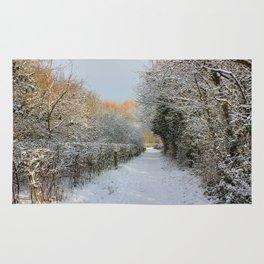Winter Walkway Rug