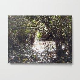 Lakeside Glimmer Metal Print