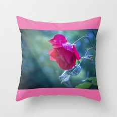 Last rows of summer Throw Pillow