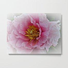Full Flower Metal Print