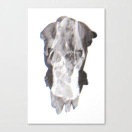 Tritone F Canvas Print
