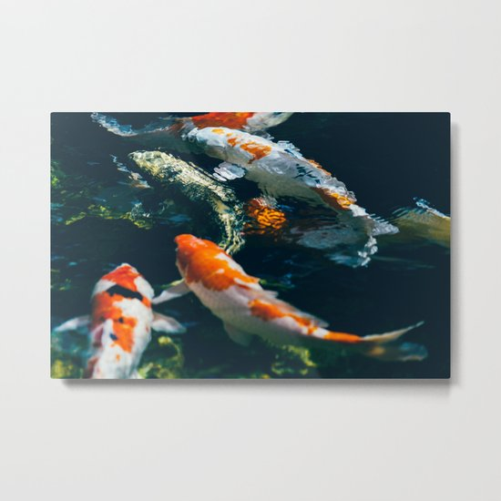 Koi Fish In Water Metal Print