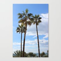 palm trees Canvas Prints featuring Palm Trees by Rebecca Bear