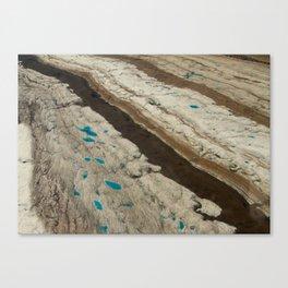 ALASKA III: Ruth Glacier Textures Canvas Print