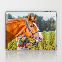 Horse head photo closeup Laptop & iPad Skin