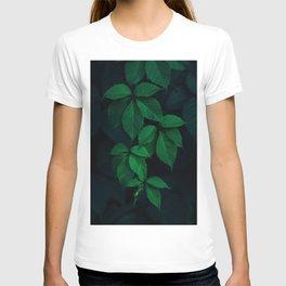 Leaves by Rodion Kutsaev T-shirt