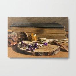 dry flowers and plants Metal Print