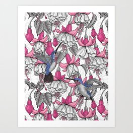White fuchsia and hummingbirds Art Print
