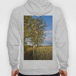 Corn Field with Birch Trees Hoody