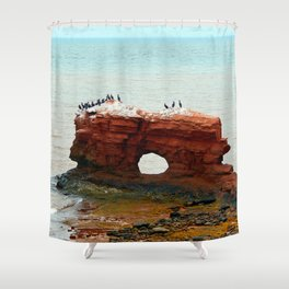 Sandstone Formation in PEI Shower Curtain