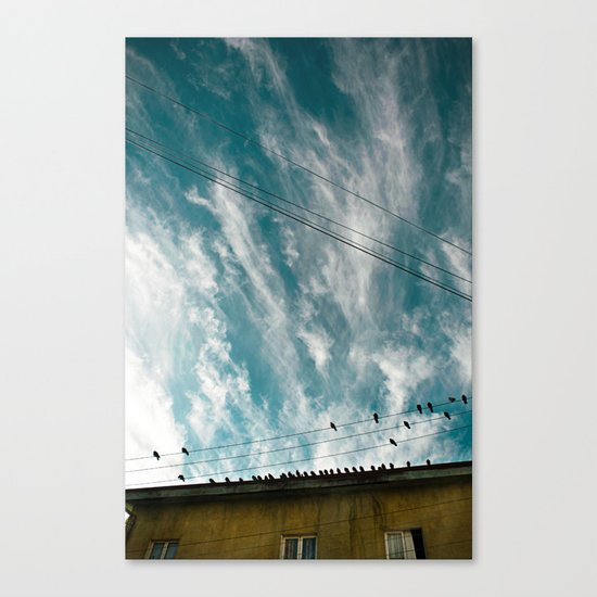 Doves and Wire#2 Canvas Print